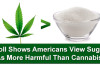 Seen as More Harmful Than Marijuana, But we Give it to Our Kids Everyday. #Marijuana #Blog420 #Cannabis #Sugar